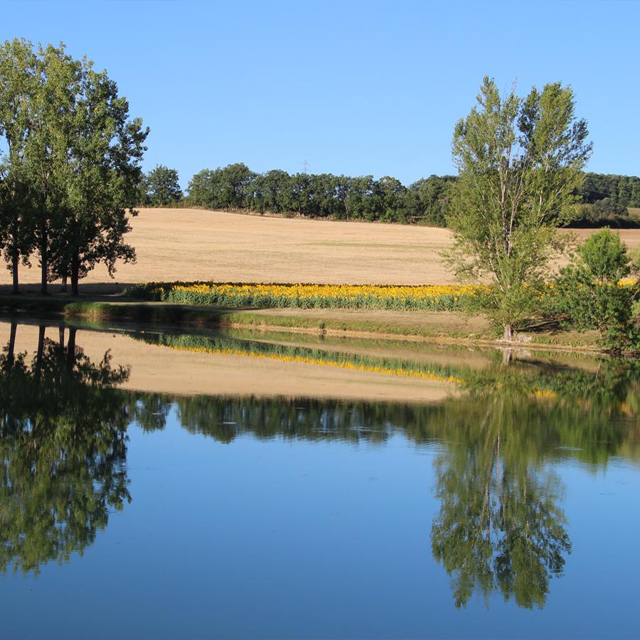 Domaine le castagné _ auch_gers_nature